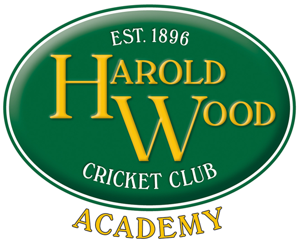 Under 19 'Harold Wood Hawks' Twenty20